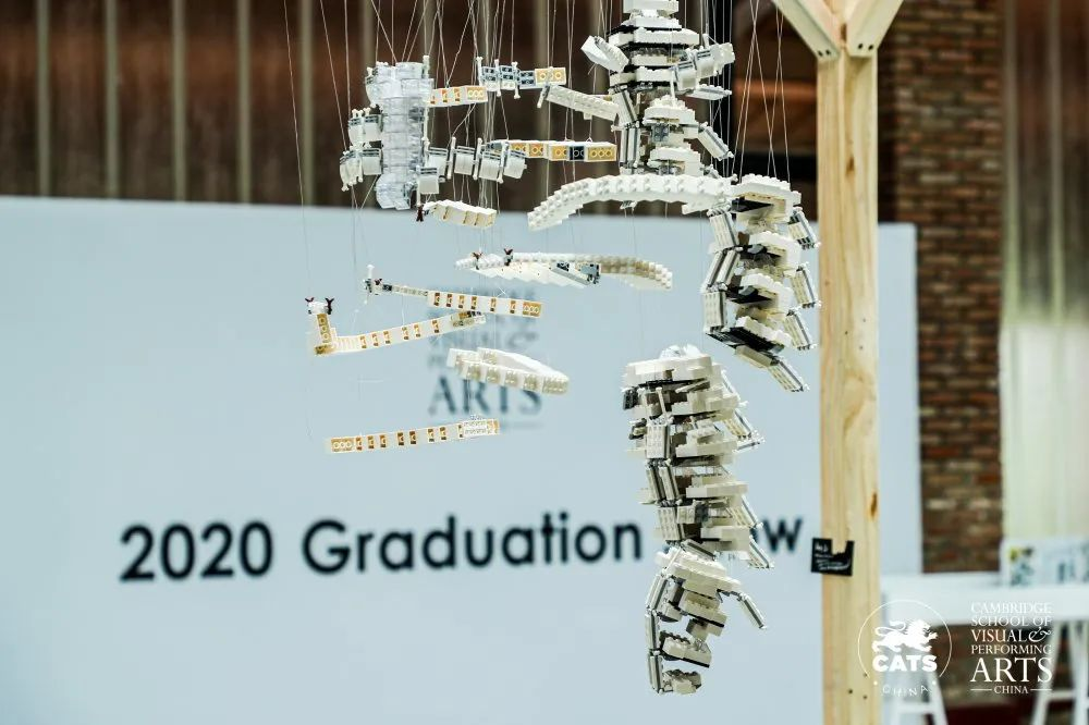 赴一场青春与艺术之约 | 2020 CSVPA China 毕业展